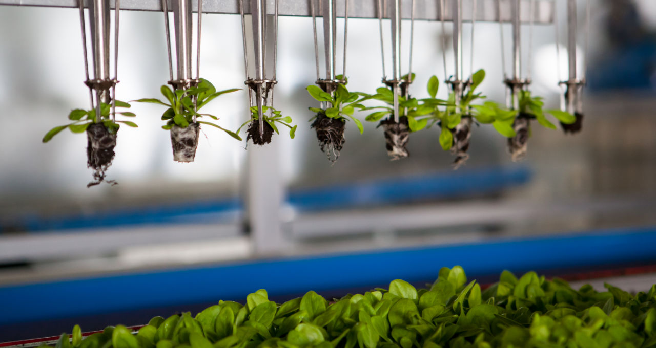 Food and agtech investors want to change the world